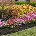 attractive landscaping with mulch beds protecting annual flowers grasses and plants with lawn